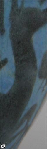 AME09091-pichet perse_3.jpg