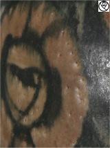 ELE09092-vase ovoide frise_2.jpg