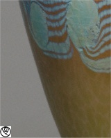 LTZ14023-vase argus_3.jpg