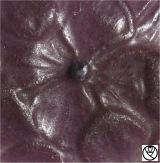 GAR09042-medaillon hortensia_3.jpg