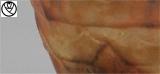 GAR18005-vase feuilles chardon_6.jpg