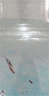 SCH18008-vase bleu rouille_4.jpg